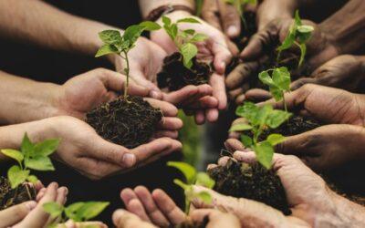 Agricoltura sociale: aiuto all'avviamento di imprese per giovani agricoltori Pacchetto Giovanisì