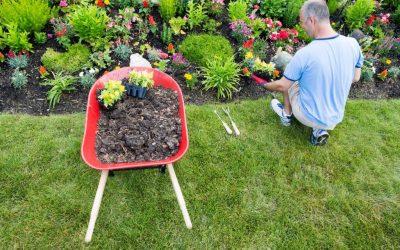 Come si diventa giardiniere?